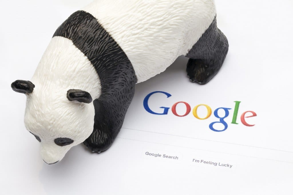 Panda Bear on top of Google logo. Concept for Google's Panda updates which affect ranking of many website requiring extensive SEO tactics to restore high page ranking. Google Panda is a change to Google's algorithm developed by Navneet Panda. Google is the world's dominate internet search engine.
